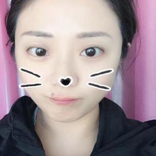 浙江丽水龙泉流氓兔