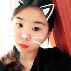 浙江温州平阳Kitty